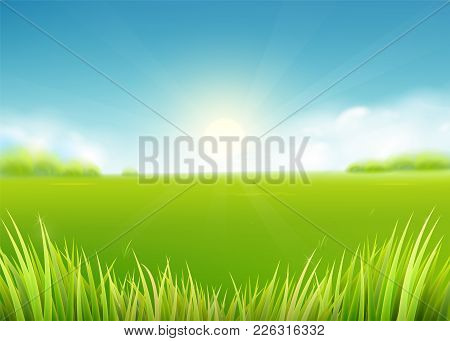 Summer Meadow Field. Nature Background With Sun, Sunny Rays, Green Grass Landscape, Trees, Clouds, S