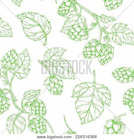 Vector Seamless Pattern Illustration Hop Cones. Hops Beer Packaging