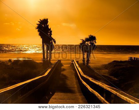 Sunset On The Beach Of Tarifa, Costa De La Luz, Spain, With Palm Trees