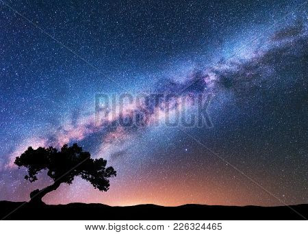 Milky Way With Alone Old Crooked Tree On The Hill. Colorful Night Landscape With Bright Milky Way, S