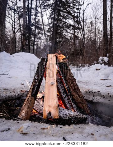 Bonfire In A Snow-covered Forest In Winter