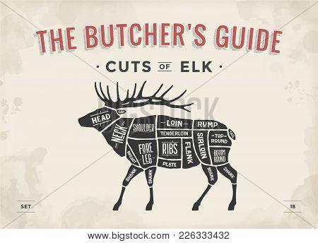 Cut Of Meat Set. Poster Butcher Diagram, Scheme - Elk. Vintage Typographic Hand-drawn Elk Silhouette