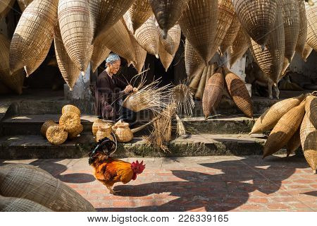 Hung Yen, Vietnam - July 9, 2016: Old House Yard With Many Bamboo Fish Trap, A Cock, And Female Craf
