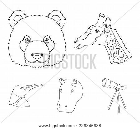 Panda, Giraffe, Hippopotamus, Penguin, Realistic Animals Set Collection Icons In Outline Style Vecto