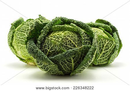 Three Savoy Cabbages Isolated On White Background Fresh Green Heads