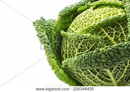 One Savoy Cabbage Close-up Isolated On White Background Fresh Green Head