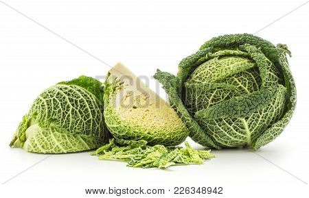 Savoy Cabbage Head And Two Quarters With Chopped Leaves Stack Isolated On White Background Fresh Gre