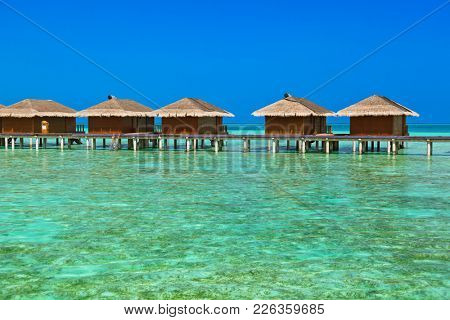 Bungalows on tropical Maldives island - nature travel background