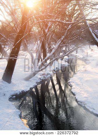 Spring Landscape - Early Spring View Of Forest Stream And Bare Trees At Sunset. Spring Nature View O