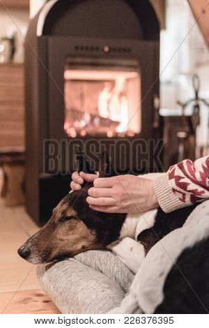Woman petting her dog at home. Warm interior with fireplace.