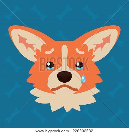 Corgi Dog Emotional Head. Vector Illustration Of Cute Dog In Flat Style Shows Sad Emotion. Crying Em