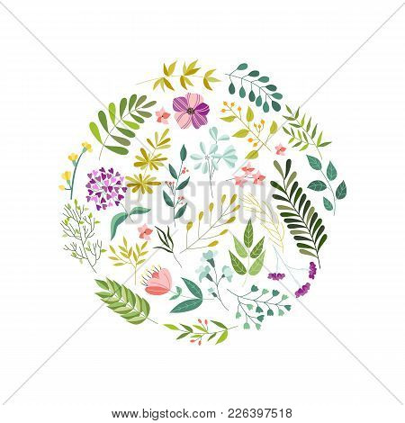 Round Banner, Greeting Card, Eco Logo Decoration Element With Flowers, Leaves And Herbs, Vector Illu