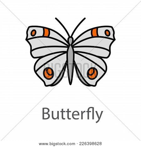 Butterfly Color Icon. Insect. Moth. Isolated Vector Illustration