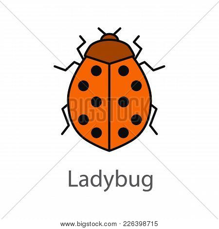 Ladybug Color Icon. Ladybird. Insect. Isolated Vector Illustration