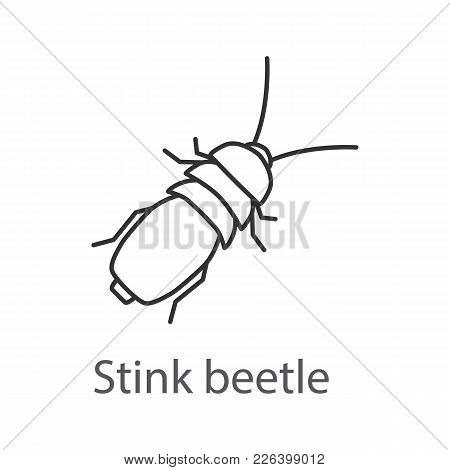 Stink Beetle Linear Icon. Insect. Bug. Thin Line Illustration. Contour Symbol. Vector Isolated Outli