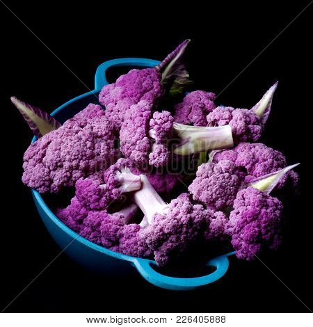 Blue Bowl Full Of Fresh Raw Purple Sprouts Of Cauliflower With Leafs Closeup On Black Background