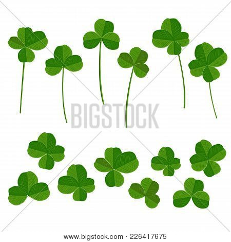 Clover Leaves Collection, Quarterfoil And Trefoil, With Stems And Without One. Vector Illustration S