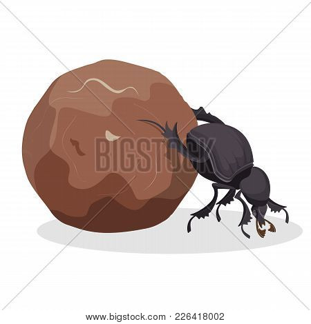 Big Dung Beetle That Pushes Big Dirty Ball. Small Strong Bug That Collects Mug. Funny Creature From