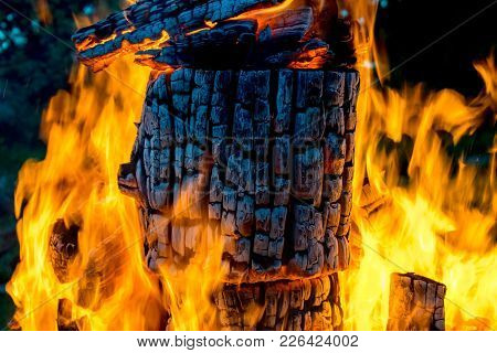 Fire. Log. Wooden log burning inside campfire. Burning firewood log. Outside picnic at fireplace. Fire at night. Fire on log.