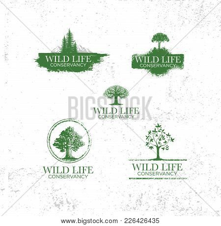 Adventure Emblems With Different Travel Design Elements Map Of Earth, Mountains, Trees Silhouettes,