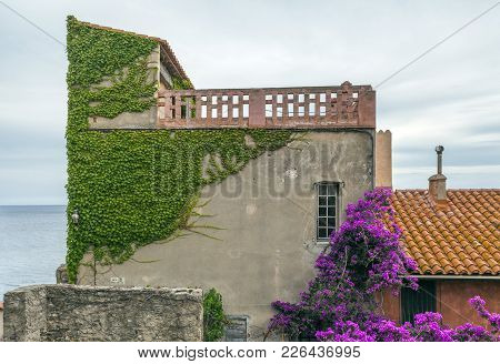 Collioure,france- June 17,2011:typical Mediterranean Facade House With Flowers, Collioure In Cote Ve