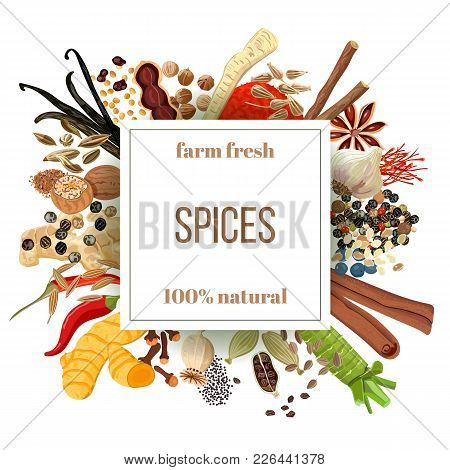 Culinary Spices Big Set Under Squire Emblem. Bunch Of Cooking Seasonings. Farm Fresh. For Cosmetics,