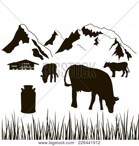 Cows, Milk Can, Grass And House On A Mountains Background. Dairy Production Silhouette. Cattle Farm.
