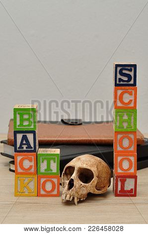 Back To School Spelled In Colorful Blocks With A Monkey Skull