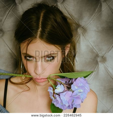 Young Woman With Brunette Hair And Hydrangea On Grey Wall. Girl With Makeup Face Hold Flower In Mout