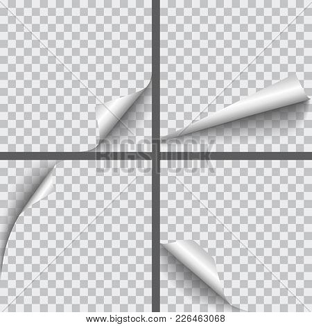 Set Of Vector Realistic Paper Curled Corners With Shadows Isolated On Transparent Background