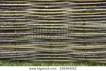 Garden Decor, Barrier, Border, Boundary. Fence Of Wooden Twigs. Natural Tree Trunk Texture. Spring,