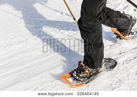 Man With Orange Snowshoe On The Snow Path. Man In Snowshoes With Trekking Poles Is The Snow In The M