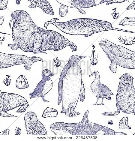 Seamless Pattern With Arctic Animals. Narwhal, Snowy Owl, Albatross, Beluga Whale, Penguin, Atlantic
