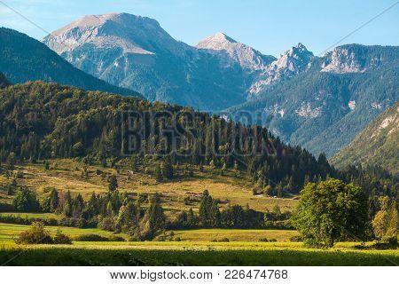Amazing Julian Alps Landscape In Summer. Detail From Region Around Lake Bohinj In Slovenia.