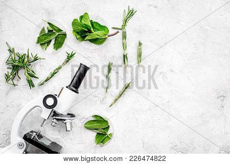 Food analysis. Pesticides free vegetables. Herbs rosemary, mint near microscope on grey background top view. poster