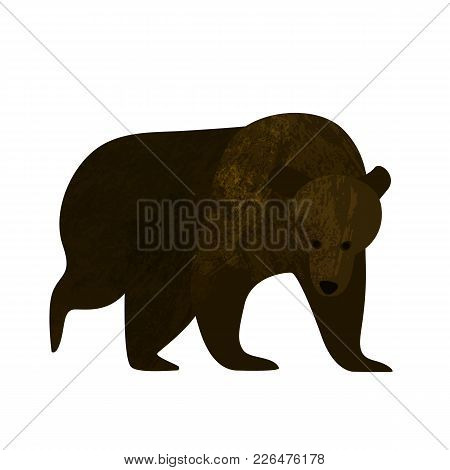 Big Brown Grizzly Bear Isolated On White Background