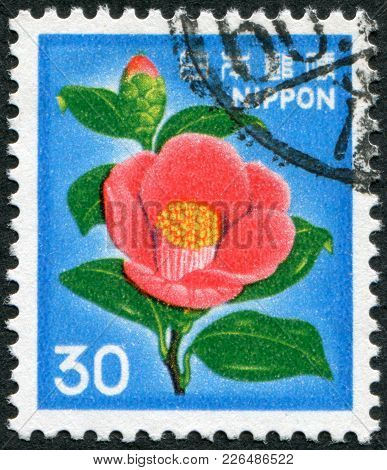 Japan - Circa 1980: A Stamp Printed In Japan, Depicts A Flower Japanese Camellia (camellia Japonica)