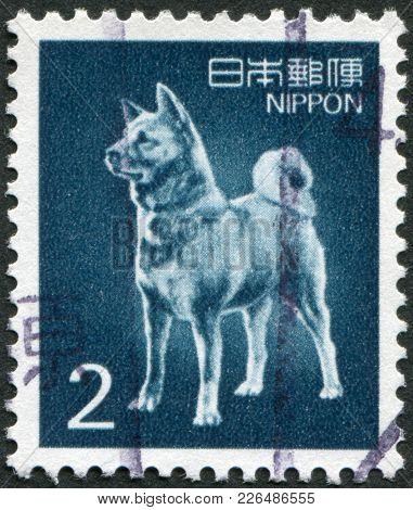 Japan - Circa 1989: A Stamp Printed In Japan, Depicts A Dog Breed Akita Inu, Circa 1989