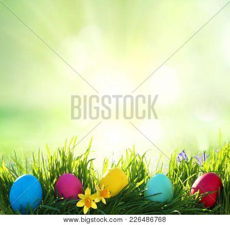 Easter background. Easter eggs on green grass