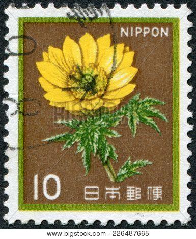 Japan - Circa 1982: A Stamp Printed In Japan, Depicts A Flower Adonis (adonis Amurensis), Circa 1982