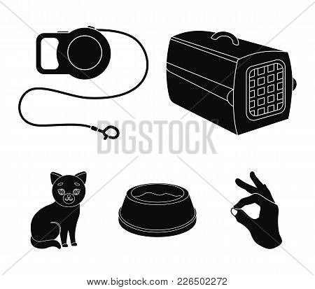 A Container For An Animal, A Roulette Leash, A Bowl Of Food, A Kitten.cat Set Collection Icons In Bl