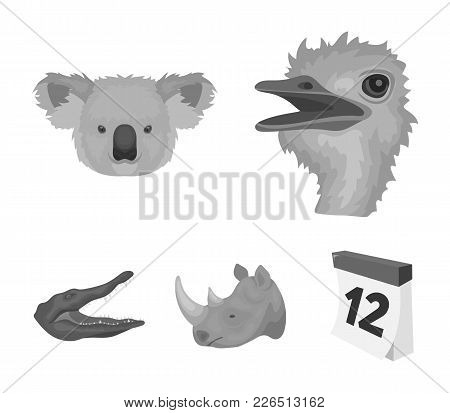 Ostrich, Koala, Rhinoceros, Crocodile, Realistic Animals Set Collection Icons In Monochrome Style Ve
