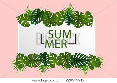 Hello Summer Greeting. Tropical Background Vector Palm Leaf. Exotic Summer Green Jungle Tree. Hawaii