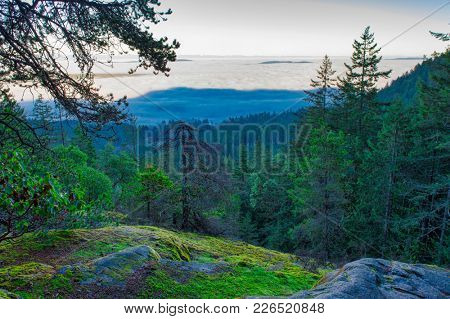 Early morning haze seen from the top of a mountain in Ladysmith, Vancouver Island, BC