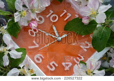 Orange Dial Of A Wall Clock In A White Frame, With White Numerals, Around The Perimeter Of White And