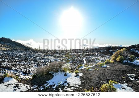 Desert Landscape In Volcan Teide National Park, Tenerife, Canary Island, Spain