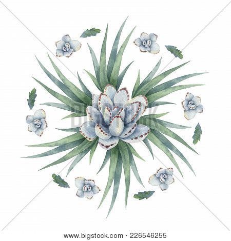 Watercolor Round Mandala Of Cacti And Succulent Plants Isolated On White Background. Flower Composit