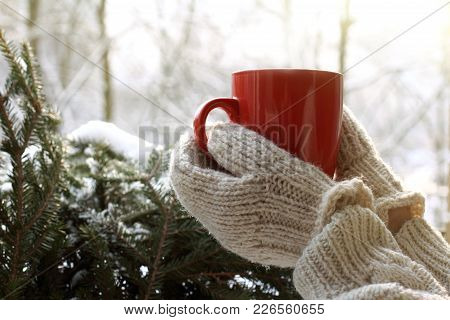 Hands In Mittens Are Holding Red Mug Against The Background Of Snow-covered Green Tree / Warming Atm