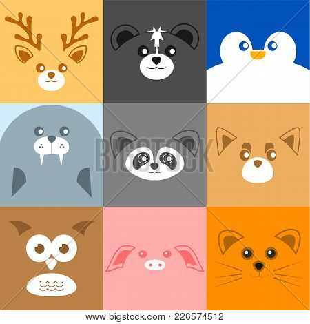Various Cute Face Animal Face Background Vector Illustration Graphic Design
