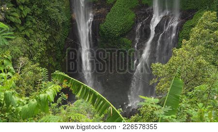 Waterfall In Green Rainforest. Triple Waterfall Sekumpul In The Mountain Jungle. Bali, Indonesia. Tr